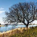 Lake Serene by Edgar Laureano