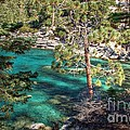 Lake Tahoe Swimming Hole by Scott McGuire