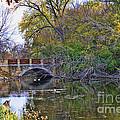 Lake Wingra Bridge by Tommy Anderson
