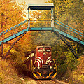 Lake Winnipesaukee New Hampshire Railroad Train In Autumn Foliage by Stephanie McDowell