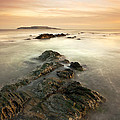Lambay Island by Brendan O Neill