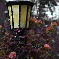 Lamp And Roses by Mike Nellums