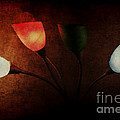 Lamp by Billie-Jo Miller