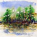 Landscape 1 by John D Benson