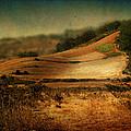 Landscape #20. Winding Hill by Alfredo Gonzalez