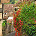 Lane And Ivy In St Cirq Lapopie France by Greg Matchick