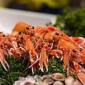 Langoustines At The Market by Heather Applegate