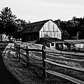 Langus Farms Black And White by Jim Finch