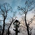 Lantern by Konstantin Dikovsky