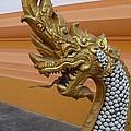 Laos Naga  by Gregory Smith