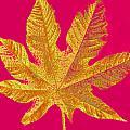 Large Leaf Photoart by Debbie Portwood