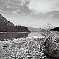 Large Rock by Gary Finnigan