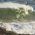 Large Waves And Seagulls Near Pemaquid Point On Maine by Keith Webber Jr