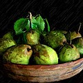 Last Of The Pears by Carrie OBrien Sibley