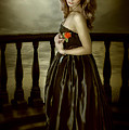 Last Red Rose by Svetlana Sewell
