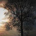 Last Snow Of Winter by Jerry Hellinga