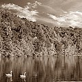 Late Afternoon At The Lake - S by David Dehner