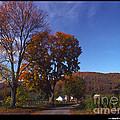 Late Fall by Jonathan Fine