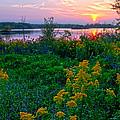 Late Summer Lake by Randall Branham