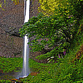 Latourell Falls Oregon - Posterized by Rich Walter