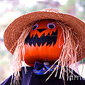 Laughing Pumpkin by Monica Poole