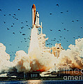 Launch Of Space Shuttle Challenger 51-l by NASA Science Source