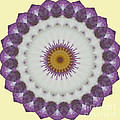 Lavender And Yellow Kaleidoscope by Jim And Emily Bush