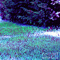 Lawn Blue by First Star Art