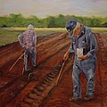 Laying Off Rows by Carol Berning