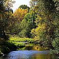 Lazy Autumn River by KatagramStudios Photography