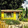 Le Jardin De Vincent by Chris Thaxter