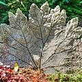 Leaf Art by Tap On Photo