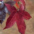 Leaf In Red by Betty LaRue