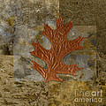 Leaf Life 01 -brown 01b2 by Variance Collections