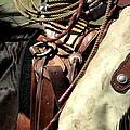 Leather by Judy Garrett