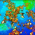 Leaves In A Pond by Joan  Minchak