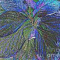 Leaves Of Blue by Leslie Revels