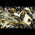Leaves Of Gold by Katharine Birkett