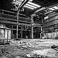 Left In Chaos by CJ Schmit