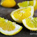 Lemon Quarters by Carlos Caetano