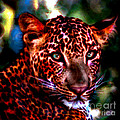 Leopard Portrait by Elinor Mavor