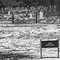 Leper Graveyard On Robben Island by Aidan Moran