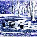 Letchworth State Park Tea Table Overlook Area