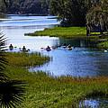 Let's Kayak by Judy Wanamaker