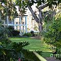 Leu Gardens by Janie North
