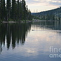 Lewis Lake With Waterfowl by Roxann Whited