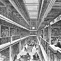 Library Of Congress, 1880 by Granger
