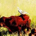 Life On The Farm V4 by Douglas Barnard