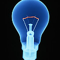 Light Bulb by D. Roberts