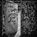 L.i.g.h.t. by Evelina Kremsdorf